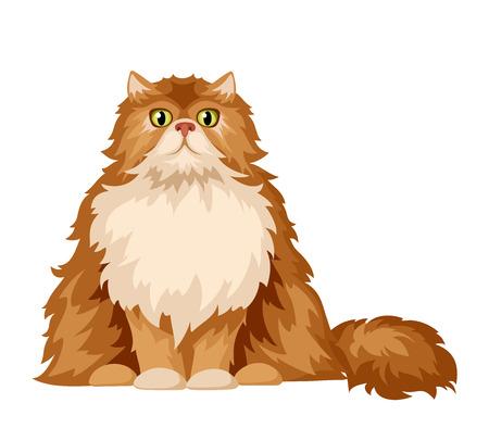 Ilustración vectorial de un gato persa esponjoso aislado en un fondo blanco.