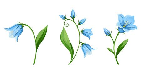 白い背景に分離された青いブルーベルの花のベクトルを設定します。  イラスト・ベクター素材