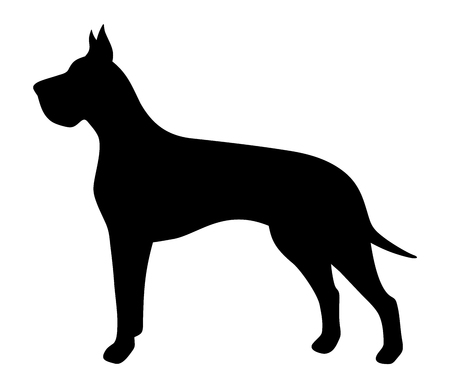 Vector black silhouette of a Great Dane dog isolated