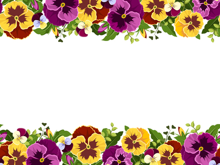 Vector horizontal seamless frame with yellow and purple pansy flowers and green leaves. Illustration