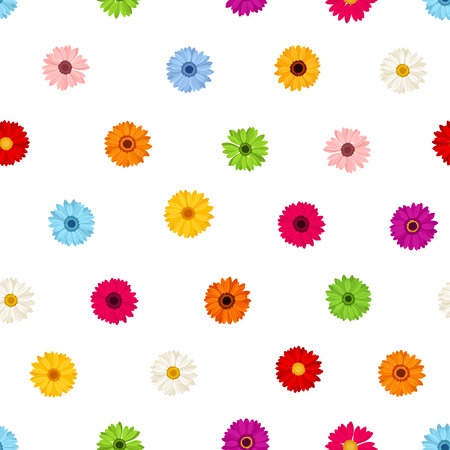 Vector seamless pattern with colorful gerbera flowers on a white background. Illustration