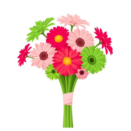 Vector bouquet of pink and green gerbera flowers isolated on a white background.