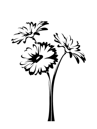 Three vector gerbera flowers with stems isolated on a white background. Illustration