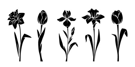 Vector schwarze Silhouetten von Frühlingsblumen (Tulpen, Narzissen und Iris) isoliert auf weißem Hintergrund.