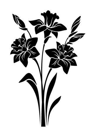 白い背景で隔離の水仙花の花束の黒いベクター シルエット。