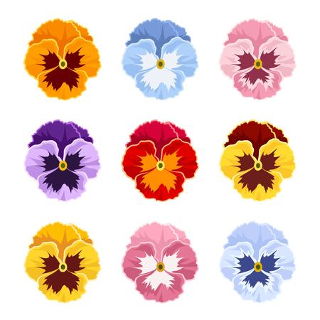 白地に色とりどりのパンジーの花のセットを分離します。