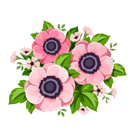 Vector pink anemone flowers isolated on a white background.