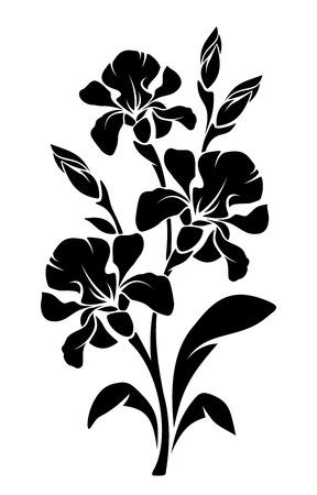 Vector Zwart silhouet van tak van iris bloemen geïsoleerd op een witte achtergrond.