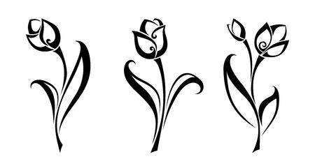벡터 흰색 배경에 고립 된 튤립 꽃의 검은 실루엣의 집합입니다.