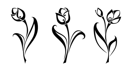 Vector set of black silhouettes of tulip flowers isolated on a white background.