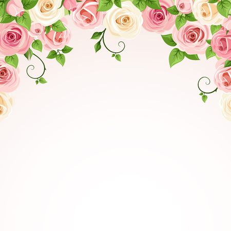 Vector background frame with pink and white roses.