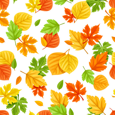 Vector seamless pattern with colorful autumn leaves on a white background.