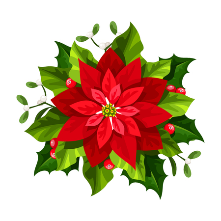 A Vector red Christmas poinsettia flower isolated on a white background. Illustration