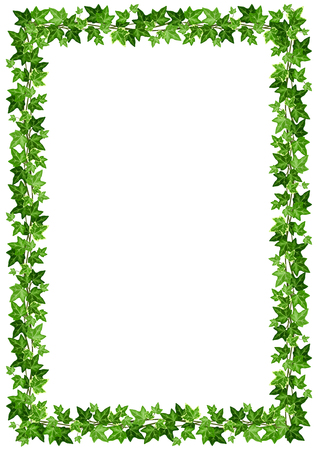 Vector background frame with green ivy leaves on a white background.