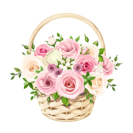 Vector beige basket with pink and white roses, isolated on a white background.