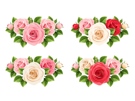 Vector set of red, pink and white roses isolated on a white background. Illustration