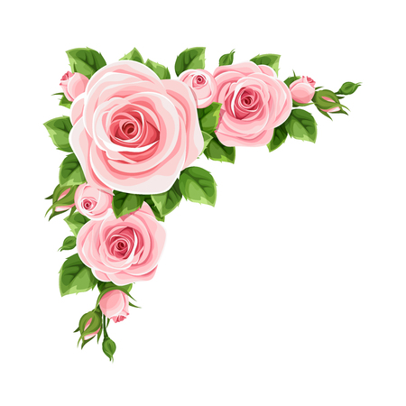 Vector corner background with pink roses and green leaves. Illustration