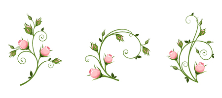 Set of vector decorative elements with pink rosebuds isolated on a white background.