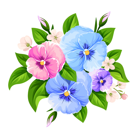 Vector bouquet of blue, pink and purple pansy flowers isolated on a white background.