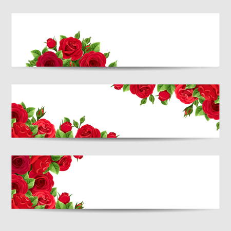Set of thee vector web banners with red roses.