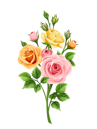 Vector pink, orange and yellow roses isolated on a white background. Ilustrace