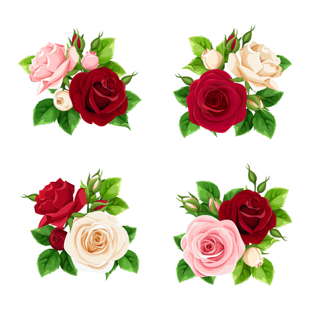 Vector set of pink, burgundy and white roses isolated on a white background.