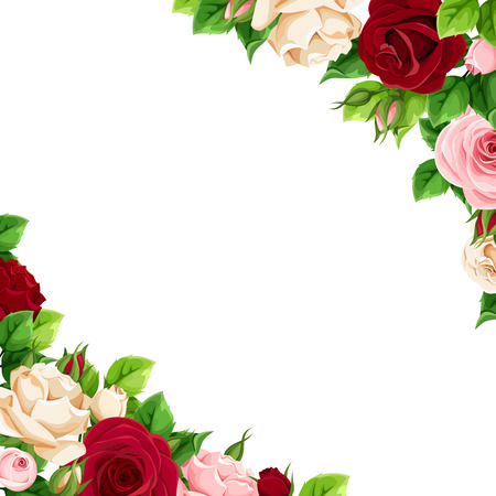 Vector corner background with pink, burgundy and white roses.