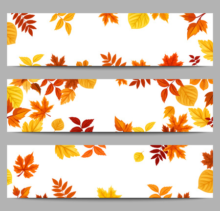 Set of three vector web banners with colorful autumn leaves.