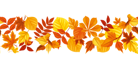 Vector horizontal seamless background with red, orange, yellow and brown autumn leaves.