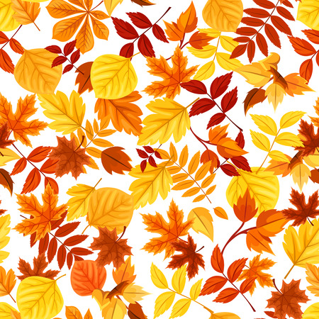 Vector seamless pattern with red, orange, yellow and brown autumn leaves. Ilustrace