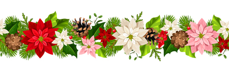 Vector Christmas horizontal seamless garland with colorful poinsettia flowers. Ilustrace