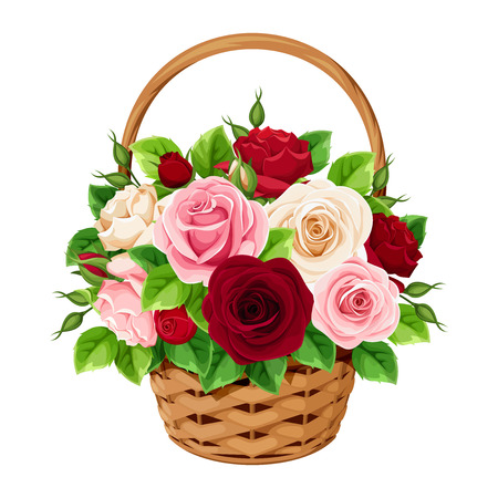 Vector basket with red, burgundy, pink and white roses isolated on a white background. Ilustração