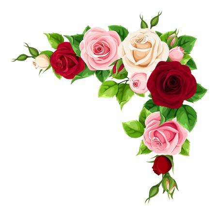 Vector corner background with red, burgundy, pink and white roses. Stock Illustratie