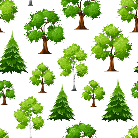 Vector seamless pattern with deciduous and coniferous green trees on a white background.