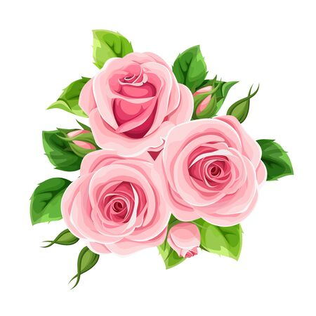 Vector pink roses isolated on a white background. Иллюстрация