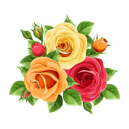 Vector red, orange and yellow roses isolated on a white background.