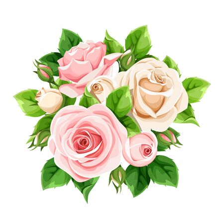 Vector pink and white roses isolated on a white background. Ilustração