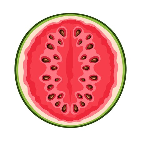Vector illustration of a watermelon half isolated on a white background. Ilustração