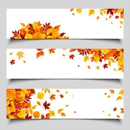 Set di tre banner web vettoriale con foglie autunnali colorate.
