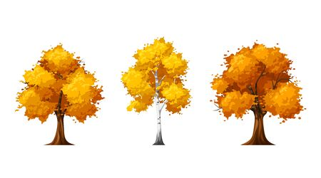 Vector set of autumn deciduous trees isolated on a white background. Ilustração