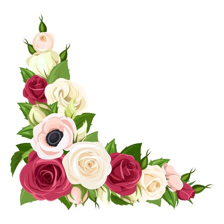 Vector corner background with red, pink and white roses, lisianthuses and anemone flowers.