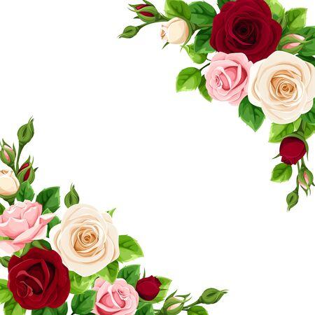 Carte de voeux ou d'invitation de vecteur avec des roses roses, bordeaux et blanches.