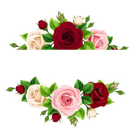 Vector banner with pink, burgundy and white roses. Vektorové ilustrace