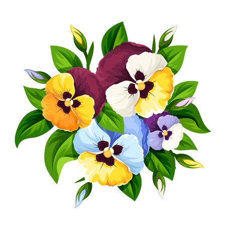 Vector bouquet of colorful pansy flowers isolated on a white background.