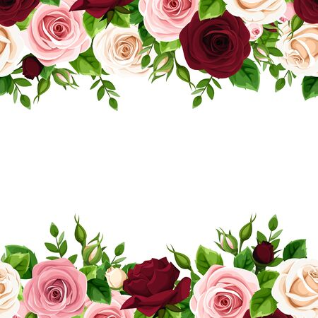 Vector horizontal seamless frame with burgundy, pink and white roses on a white background.