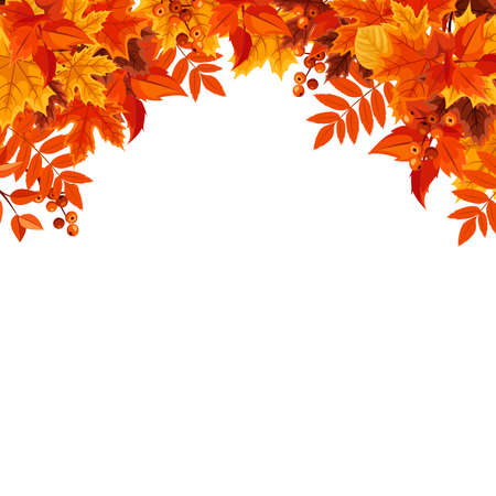 Vector frame background with orange autumn leaves.