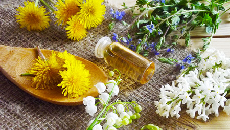 Medicinal tinctures from medicinal herbs. Stock Photo