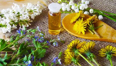 Medicinal tinctures from medicinal herbs. Stok Fotoğraf