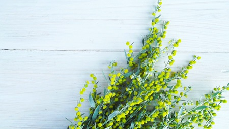 Beautiful blooming wormwood on wooden background. Banco de Imagens