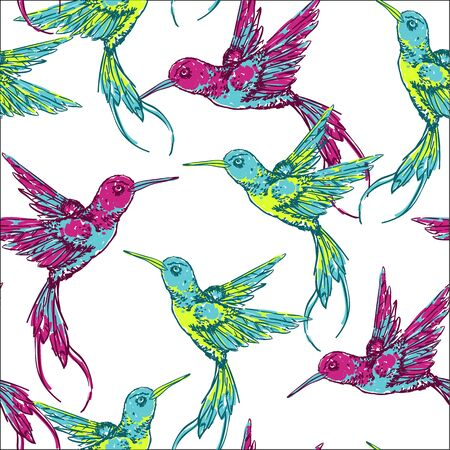 pajaros: Drenaje de la mano de fondo tropical con colibri bird.Vector patrón transparente